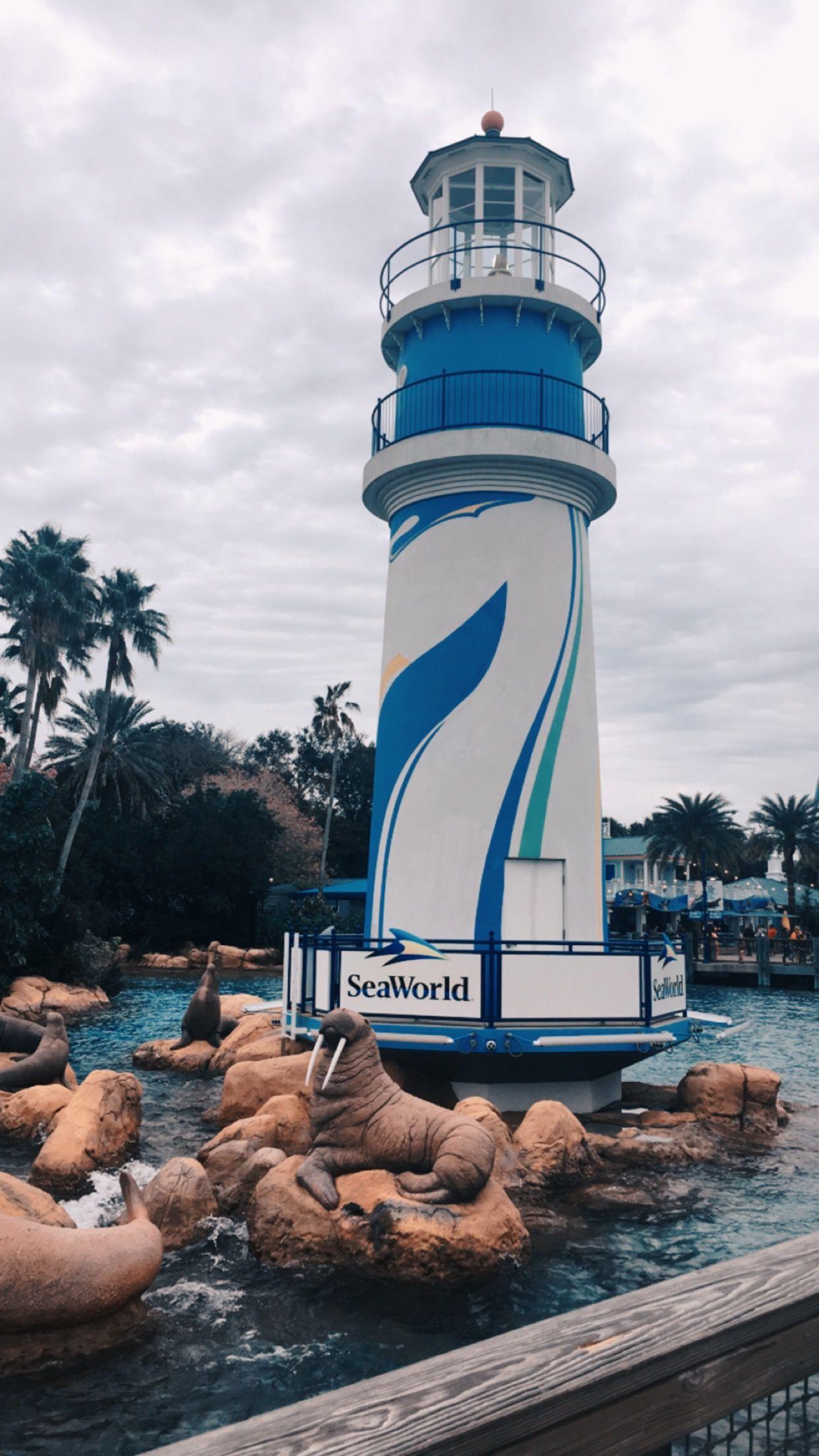 Sea worldOrlando, FL 🐬 Sea world, Orlando fotos, Park