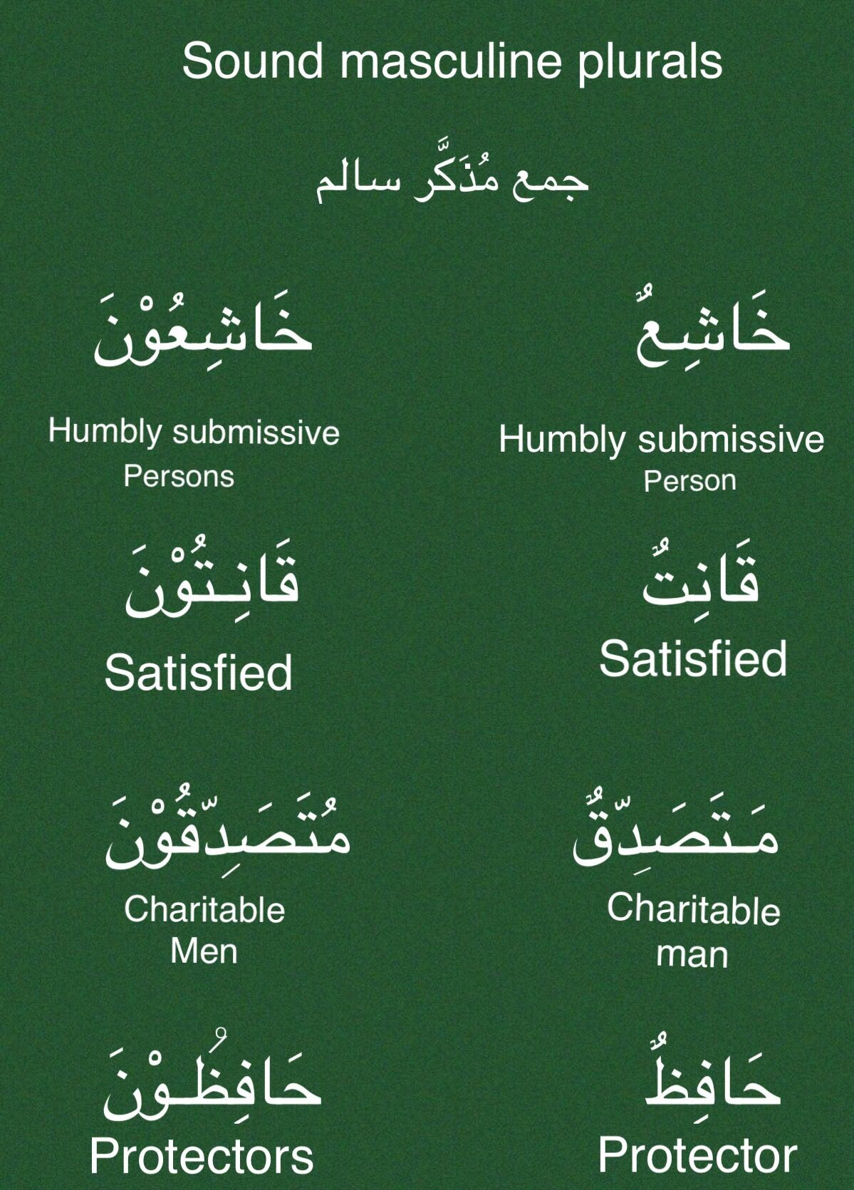 جمع مذكر سالم Sound Masculine Plurals Learn Arabic Language Learning Arabic Arabic Language