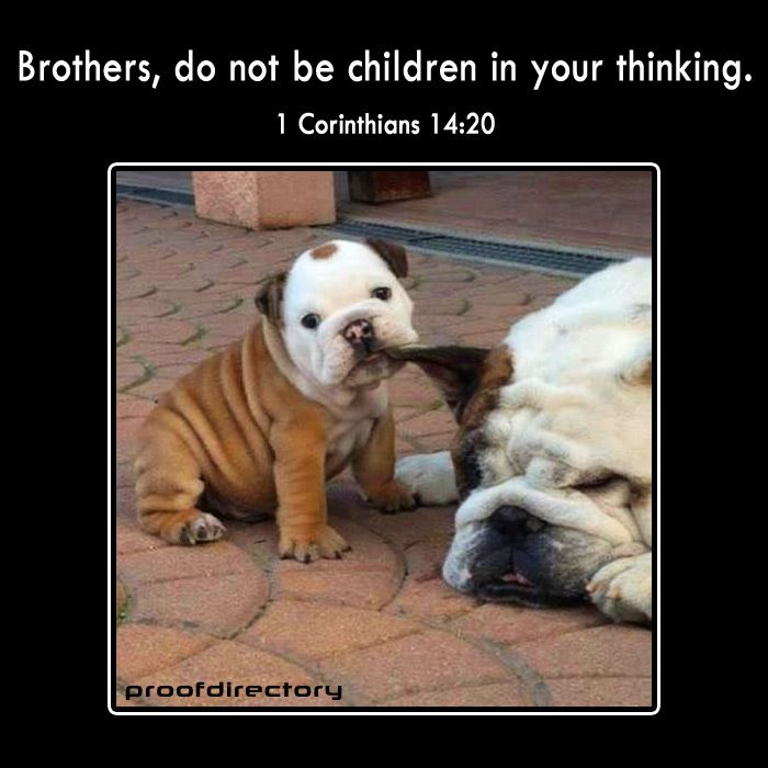 Brothers Do Not Be Children In Your Thinking 1 Corinthians 14