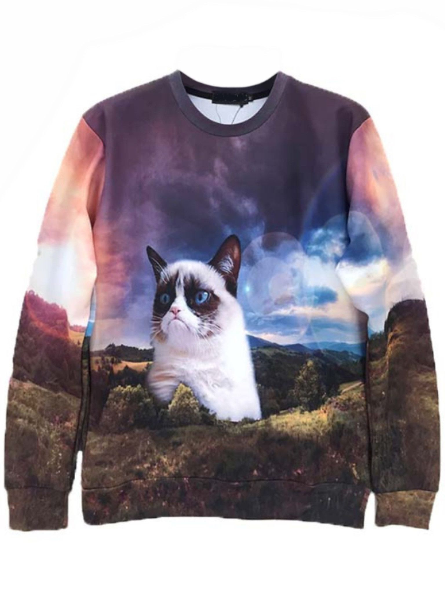Adorable Grumpy Cat In Space Graphic Print Unisex Pullover Sweatshirt Sweater Gifts For Cat Lovers Cute Sweatshirts Cat Sweatshirt Grumpy Cat [ 2048 x 1536 Pixel ]
