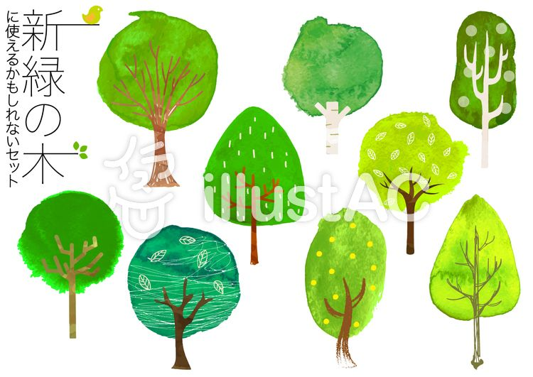 水彩風の新緑の木イラストイラスト 木イラスト 水彩イラスト 木