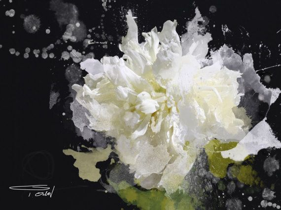 blow flower print blow flower floral abstract art white floral
