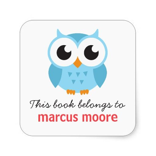 Cute Blue Baby Owl Animal Cartoon Bookplate Book Square Sticker Owl Drawing Simple Owl Cartoon Owl Posters