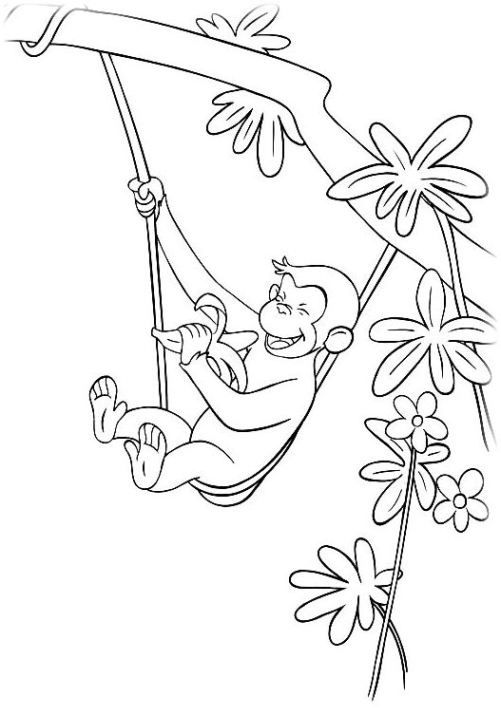 Coco Der Neugierige Affe 15 Malen Mit Robin Curious George