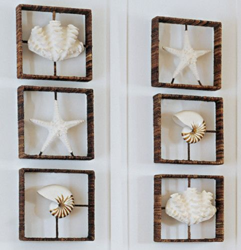 Beach Theme Home Decor Shadow Box Beach Gift: Starfish, Nautilus & Clam Shadow Boxes