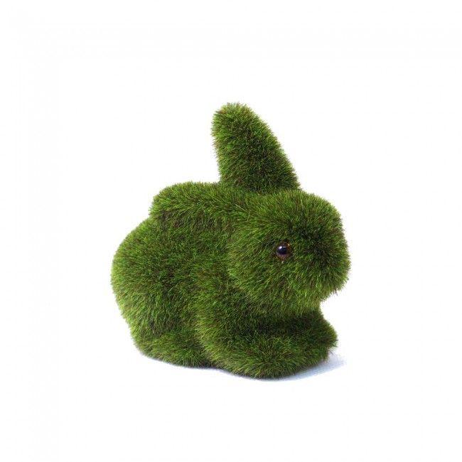 moss rabbit