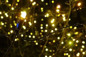 Facts about Christmas Lights | Interesting Facts