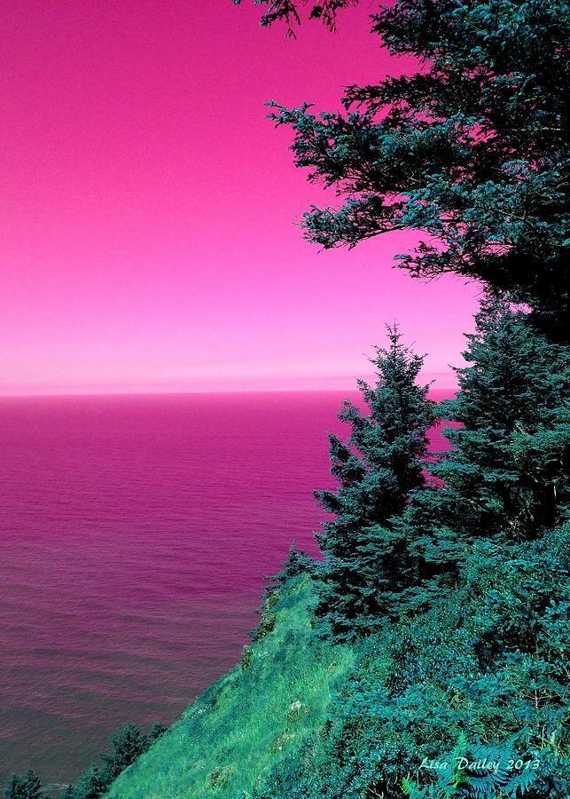 Pink Ocean Sunrise Pink Ocean Nature Pictures Landscape