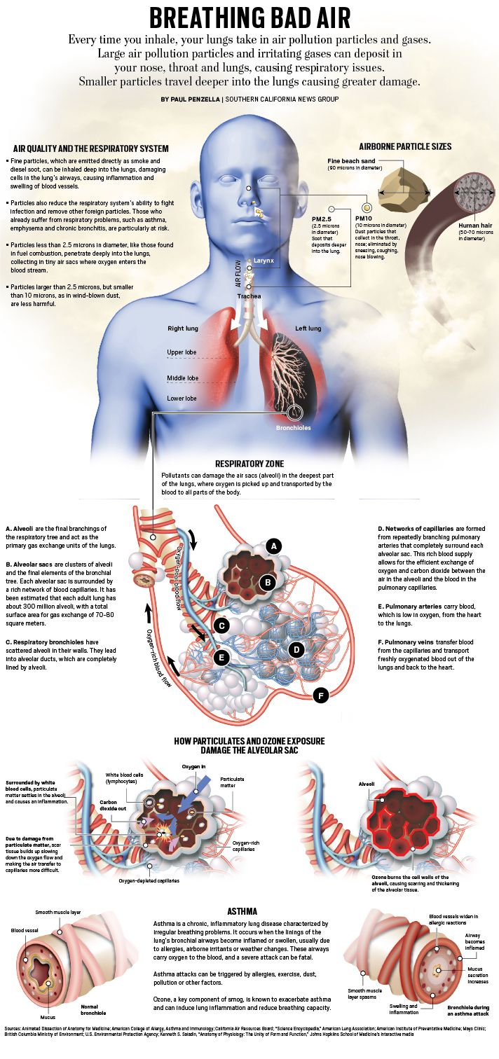 what affects the respiratory system