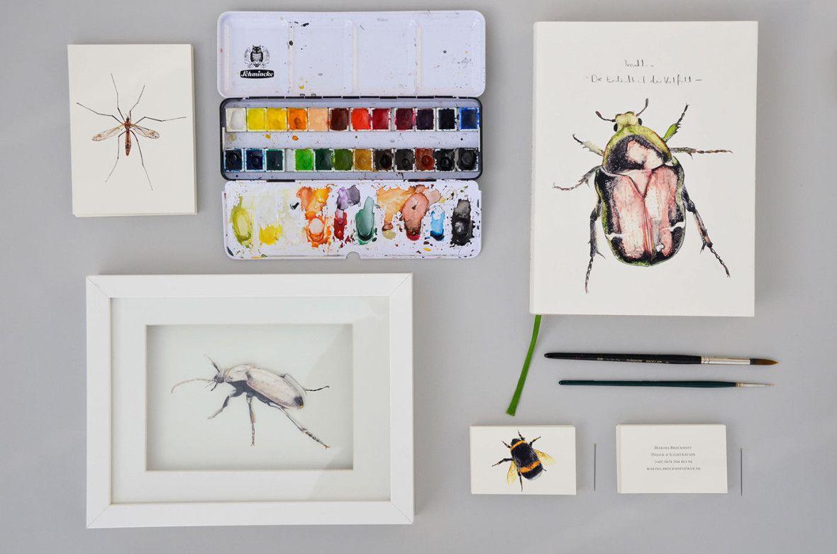 insekten  die endlichkeit der vielfalt  insekten