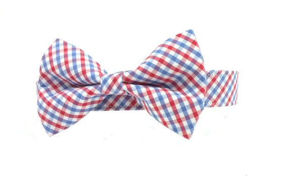 Red White and Blue Checkered Gingham Dog Collar by RipleyWear