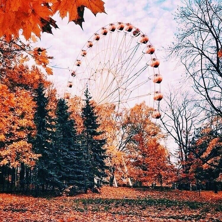 Pin by Lucie Hartmannová on fall | Fall pictures, Autumn ...
