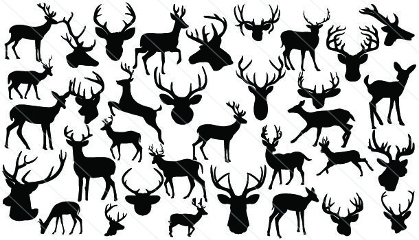 Deer Silhouette Vector A Total Of 35 Different Silhouettes Of Deer Deer Head And More In Vector Fo Deer Head Silhouette Animal Silhouette Silhouette Vector