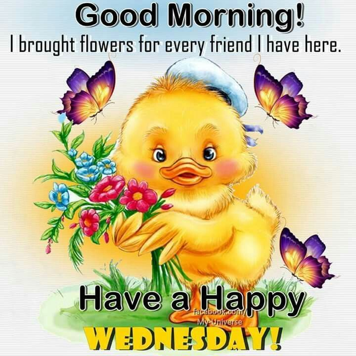Good Morning My Sweet In German : Good morning have a happy wednesday quotes pinterest