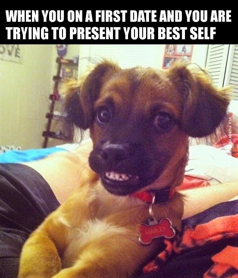 30 Funny Memes That Sum Up Online Dating Memes Run Dog Memes Puppy Meme Funny Dog Memes