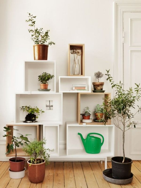 Wohnzimmer Wand Regal Pflanzen Design Ideen