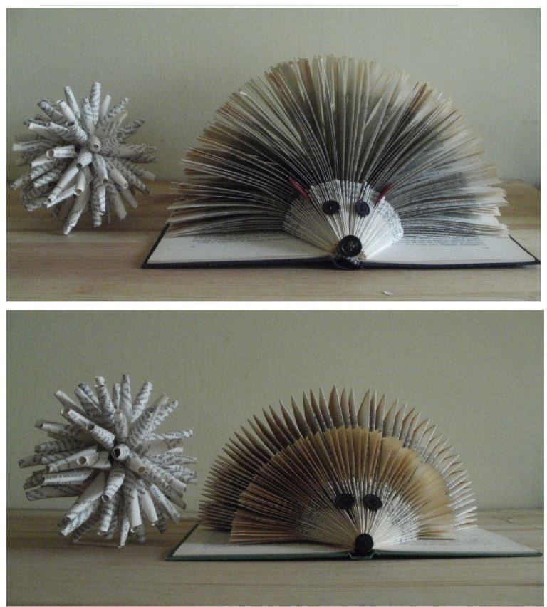 How To Make A Book Hedgehog : Clara maffei folded books pinterest hedgehogs book