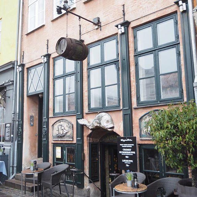 One more from Copenhagen 😍🌴 #kopenhagen #copenhagen #nyhavn17 #swisstravelblogger #travellers #travel #scandinavia #traveler #nyhavn #denmark #beautifuldestination #swissblogger #travellove #kobenhavn #nyhavncopenhagen #swissblog #tra