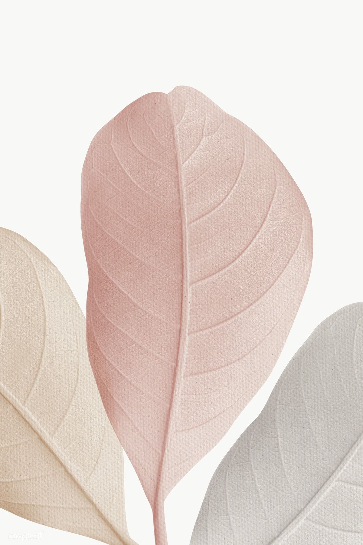 Download free png of Closeup of pastel leaves text