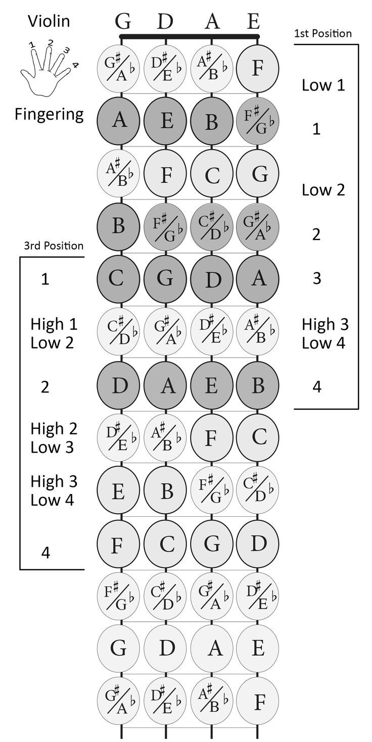 Violin fingerboard with notes and finger numbers - 1st and 3rd ...