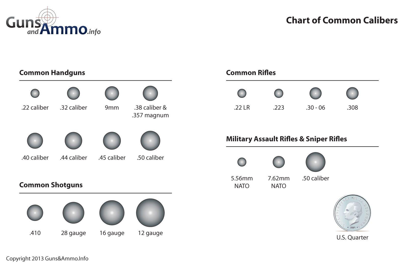 Eye Ball Diagram Worksheet