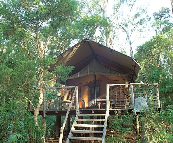 Gl&ing in an Original Safari tent - Private room - Jervis Bay & Paperbark Camp - Luxury Accommodation Jervis Bay South Coast NSW ...