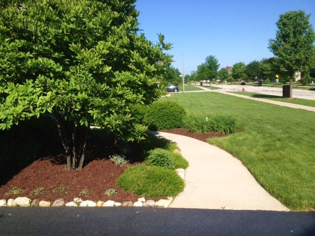 Scotts Nature Scapes Advanced Mulch Deep Forest Brown Review News Bubblews Garden Scape Mulch