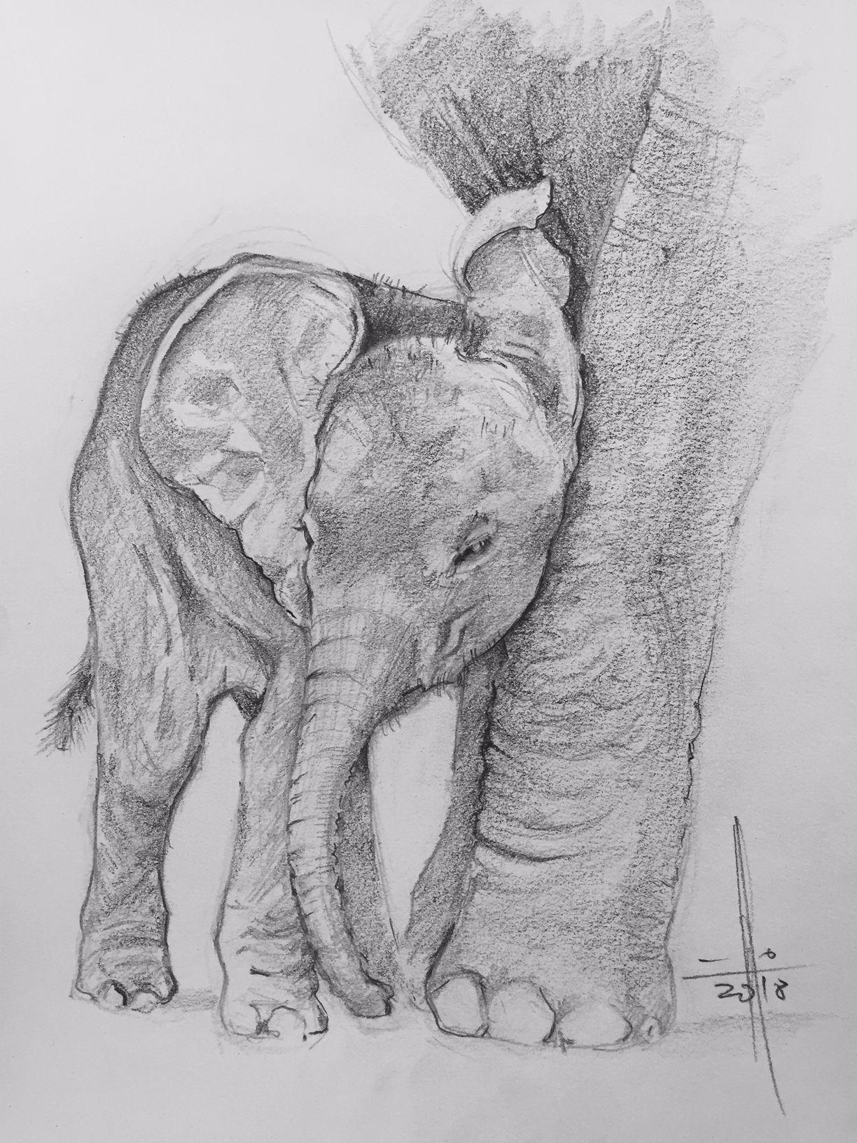 Dibujo Elefante Con Su Madre Francisco Javier Abellan Elefantes Animales Jirafas