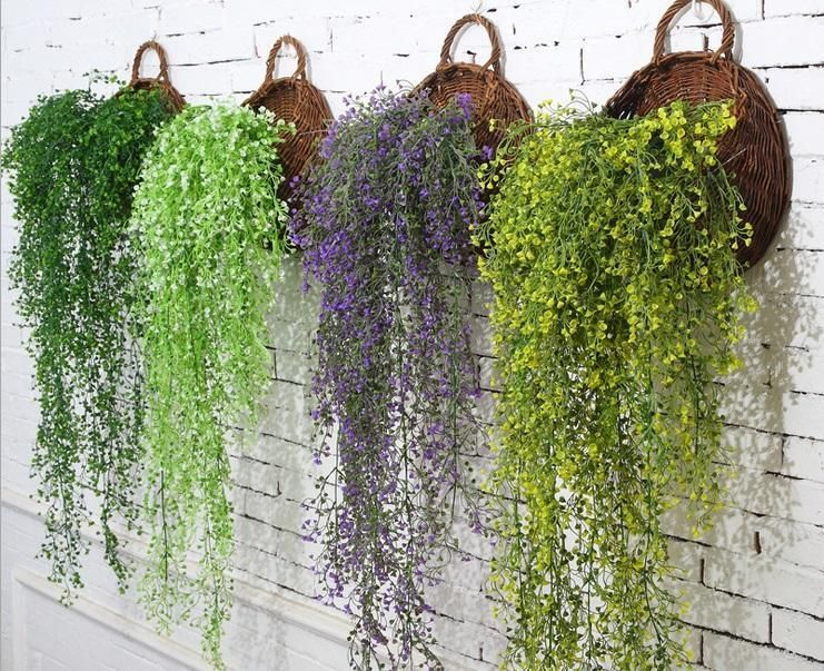 10 Cascading Plants You Can Grow Indoors for Home Decoration #hangingplantsindoor