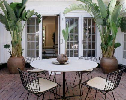 Bohemian Glamour Boho Chic Best Large Pots Plants
