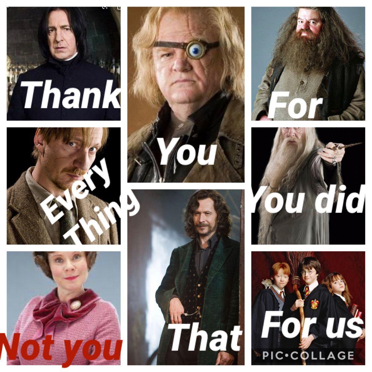 Thank You Harry Potter Memes Hilarious Harry Potter Series Harry Potter Memes