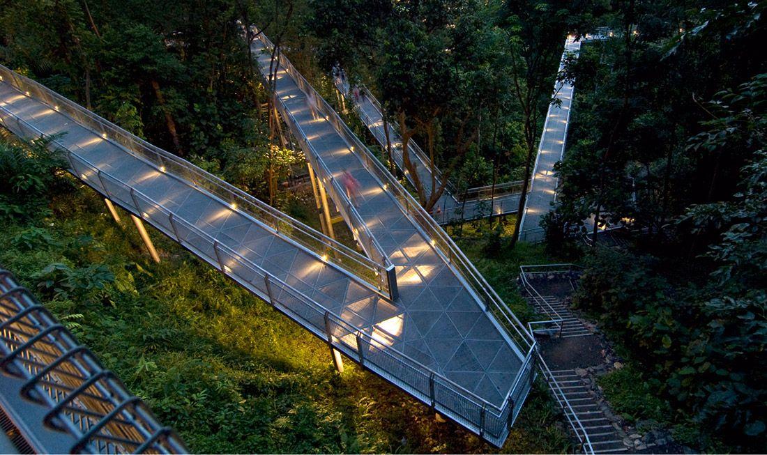 FOREST-WALK-by-look-architects-03 « Landscape Architecture Works | Landezine