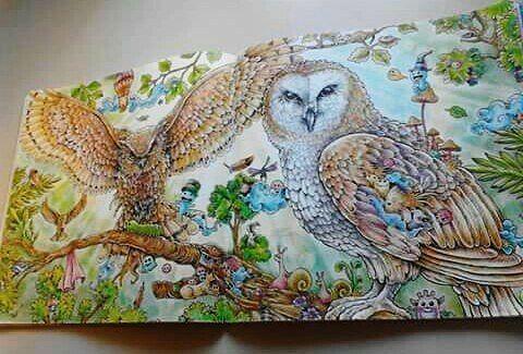 Animorpia Coloring Book By Kerby Rosanes Masterpieces Secret Colortherapy Coloringbooksforadultph Divasdasartes Desenhoscolorir