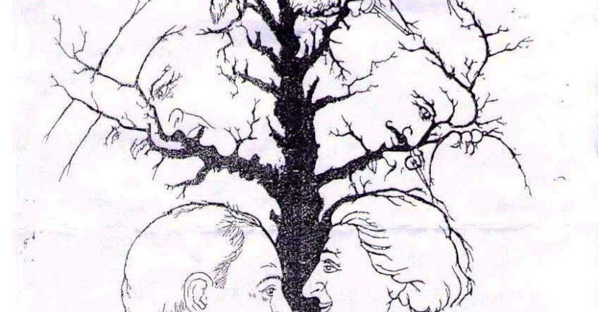 How Many Faces Do You See In The Photo Via LittleThings Funny Optical