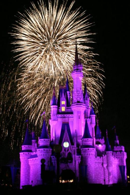 Disney News Network • Disney Permanently Cancels its Firework ...