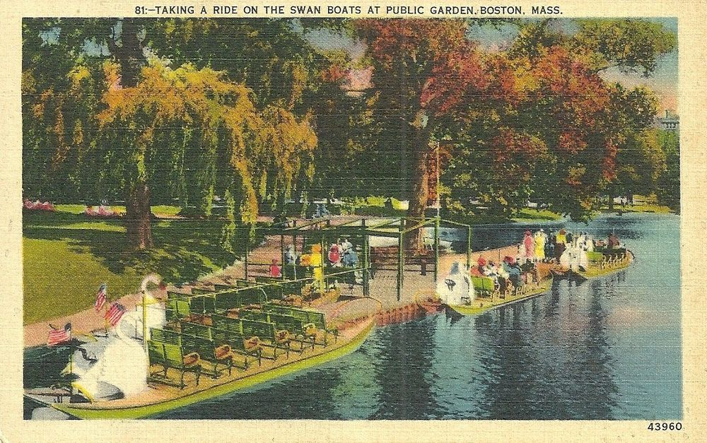 Boston Public Garden vintage postcard