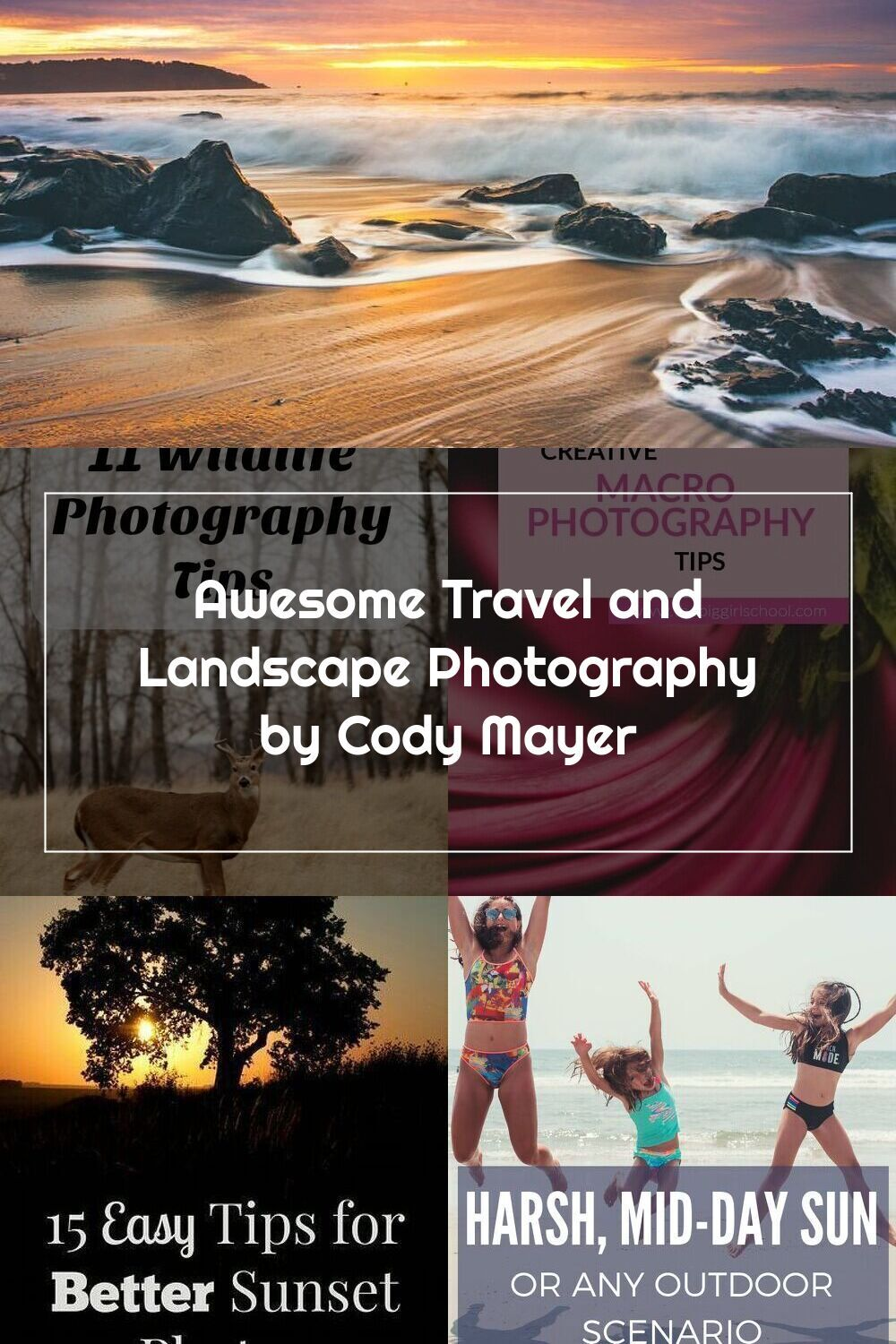 Pin On Nature Photography Tips