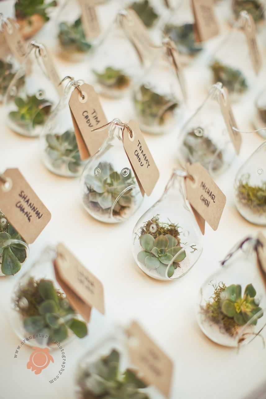 Pin by Mindi Michaelson on Wedding ideas for Jaime | Pinterest ...