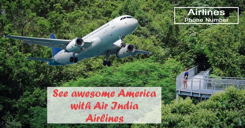 How To Get Frequent Flyer Number For Air India