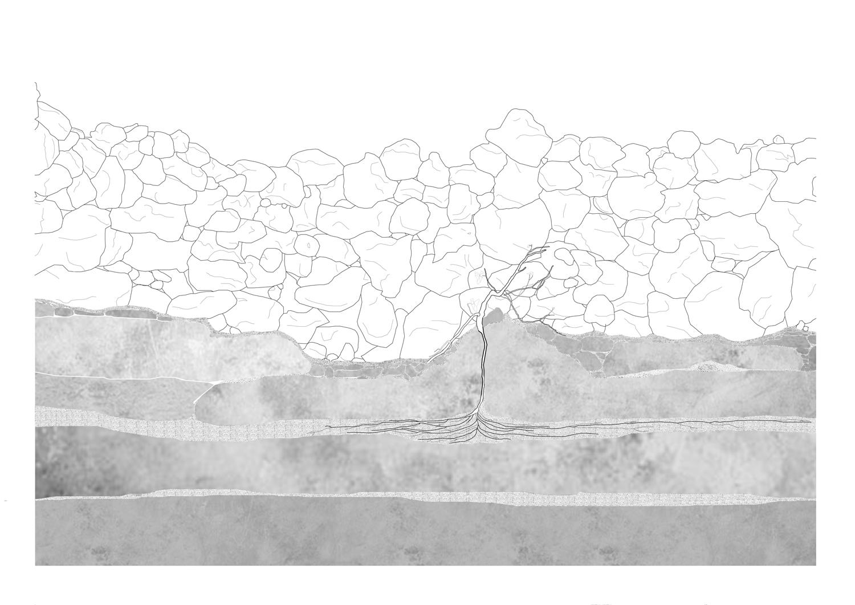 Pico Island Ground Condition Ground Section