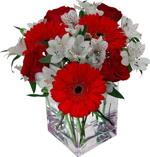 red and whiteflowers | Perfect Day Red and White Flowers by Canada Flowers