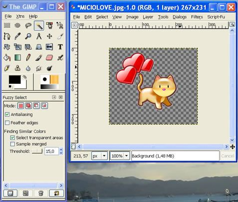 Transparent Image With Gimp Gimp Tutorial Gimp Photoshop Elements Tutorials