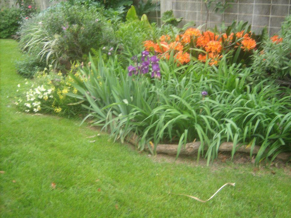 Disenar Canteros Jardines Canteros Canteros De Flores