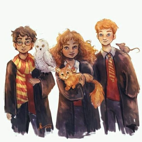 Harry Potter Ron Weasley And Hermione Granger Harry