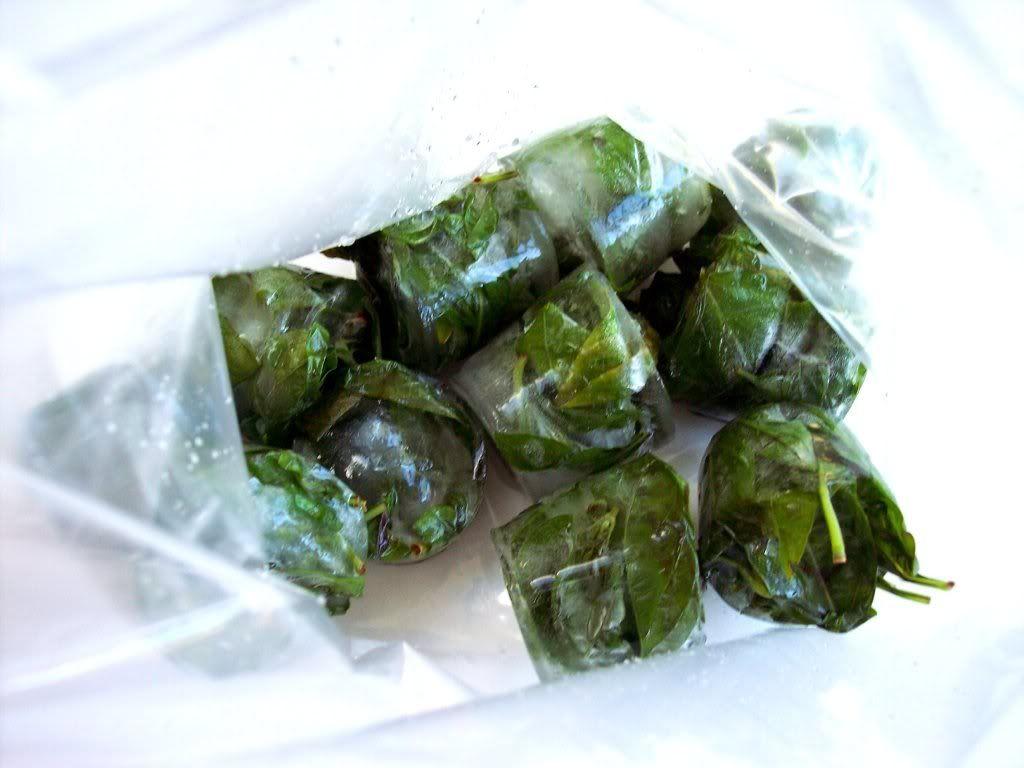 Time to Make the Pesto Freezing fresh herbs, How to make