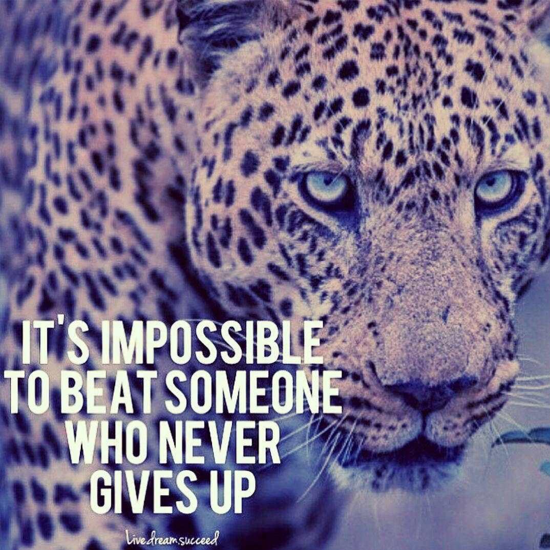 It's IMPOSSIBLE to beat Someone who NEVER GIVES UP!!! Read
