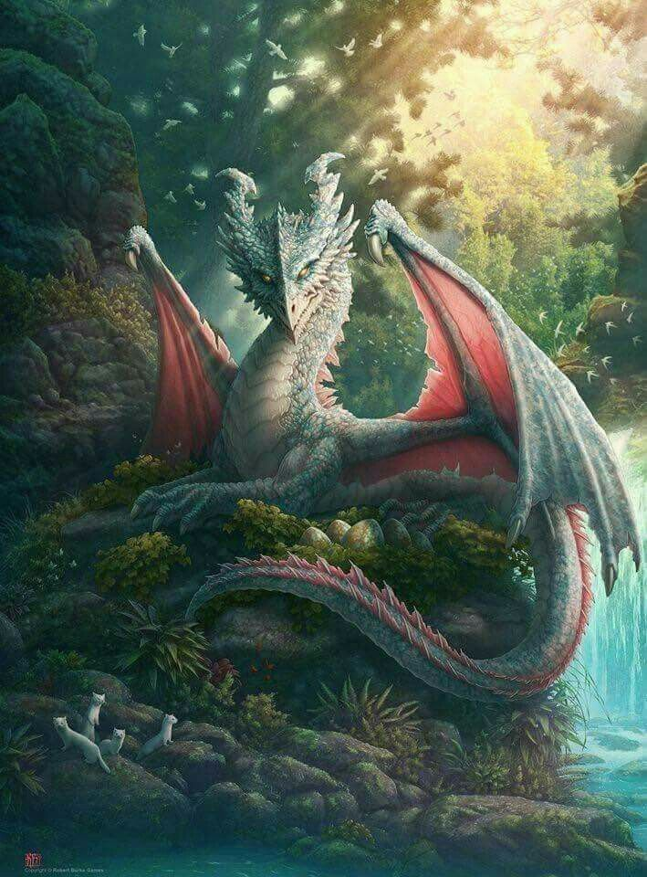 Pin by Dragon Girl on Dragons | Mythical creatures art ...