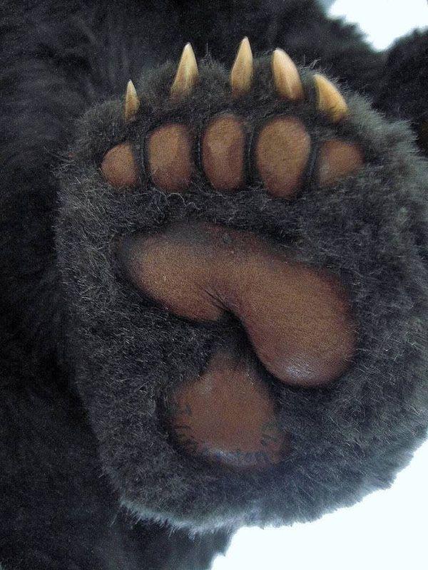 Detail of teddy bear foot | Sculpture Inspirations | Pinterest ...