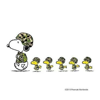 Snoopy And Company Salute See More Peanuts Snoopy Pics At Www
