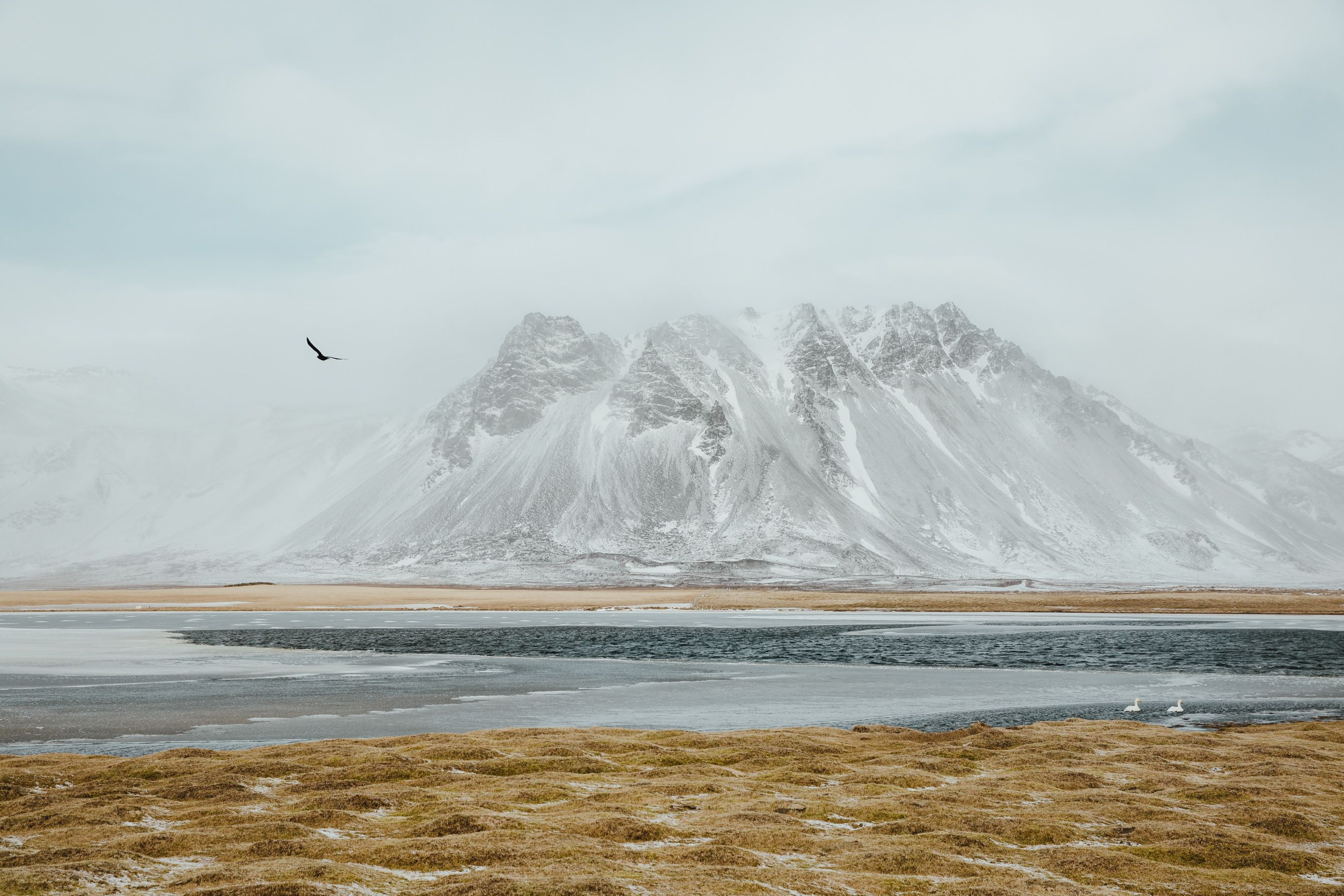 Three birds one stone. West Iceland. [2700x1800][OC]